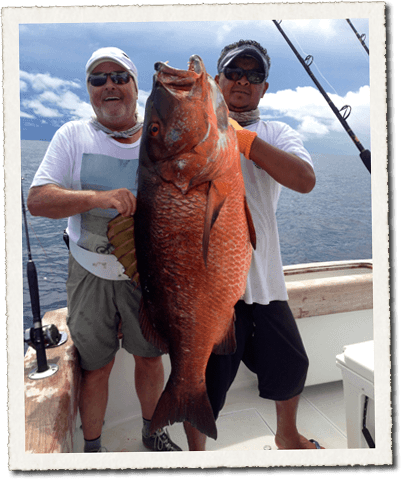 Snapper caught on charter trip